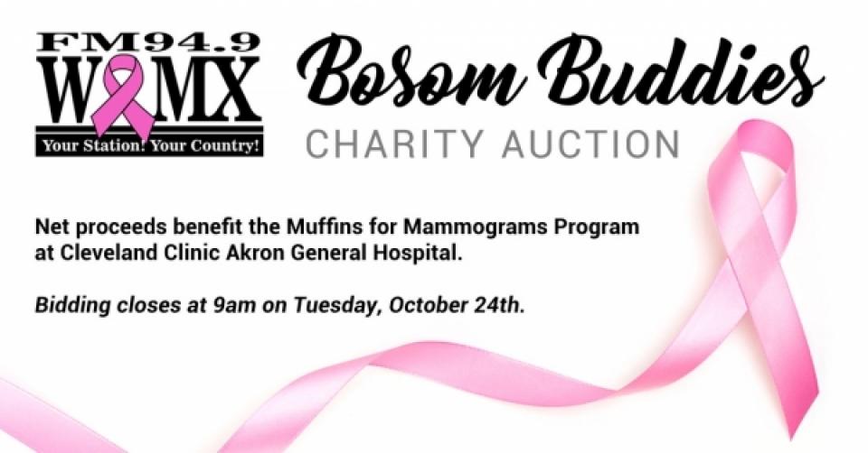 Bosom Buddies Charity Auction